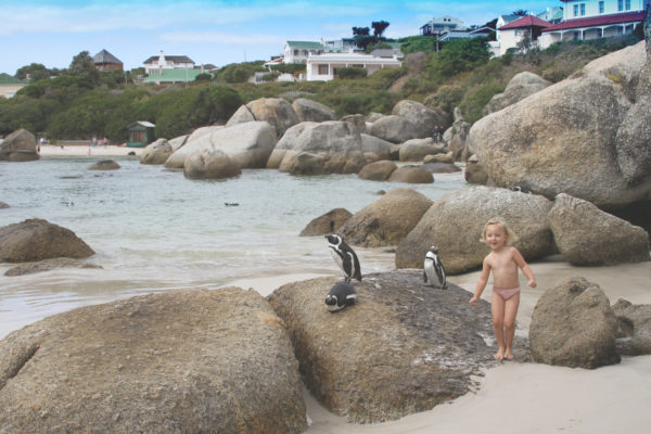 Cape Town, child-friendly, things to do, parenting, kids activities, agaaain, outings, childhood, Boulders Beach, Simon's Town, penguins, beach, swim