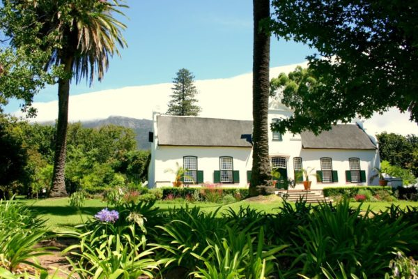 Cape Town, child friendly, things to do, parenting, kids activities, agaaain, outings, childhood, things to do, things to do with kids in Cape Town, things to do with kids near me, things to do with kids this weekend, kids activities this weekend, family adventures Cape Town, children's activities Cape Town, toddlers, child friendly wine farms, family friendly wine farms, wine farms with playgrounds, wine farms with jungle gyms, wineries, vineyards, buitenverwachting, constantia, southern suburbs