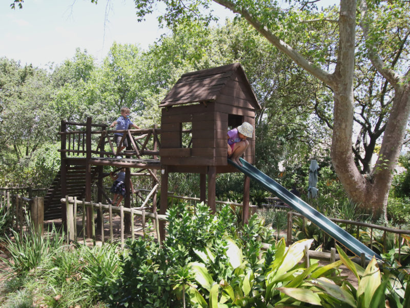 Cape Town, child friendly, things to do, parenting, kids activities, agaaain, outings, childhood, things to do, things to do with kids in Cape Town, things to do with kids near me, things to do with kids this weekend, kids activities this weekend, family adventures Cape Town, children's activities Cape Town, toddlers, delvera agri village, r44, stellenbosch