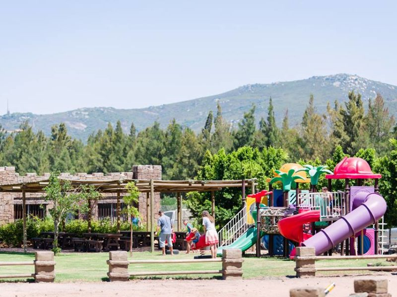 pony rides, farm animals, Cape Town, child-friendly, things to do, parenting, kids activities, agaaain, outings, childhood, family-friendly, Graceland Venues, Boland, Paarl, play park, water slide, jungle gym