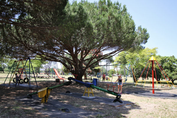 Cape Town, child friendly, things to do, parenting, kids activities, agaaain, outings, childhood, things to do, things to do with kids in Cape Town, things to do with kids near me, things to do with kids this weekend, kids activities this weekend, family adventures Cape Town, children's activities Cape Town, toddlers, Keurboom park, rondebosch, newlands, southern suburbs, jungle gym
