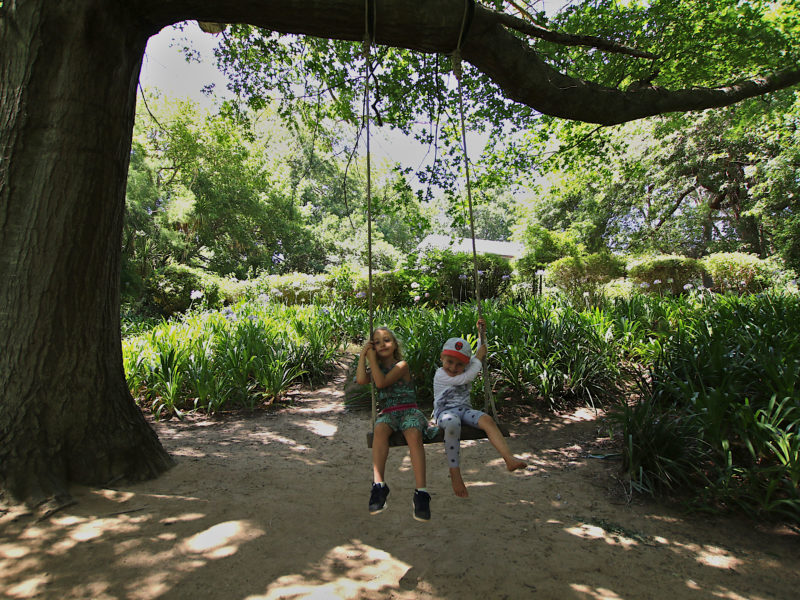 Cape Town, child friendly, things to do, parenting, kids activities, agaaain, outings, childhood, things to do, things to do with kids in Cape Town, things to do with kids near me, things to do with kids this weekend, kids activities this weekend, family adventures Cape Town, children's activities Cape Town, toddlers, child friendly restaurants, family friendly restaurants, cape town restaurants, little stream tea garden, constantia, southern suburbs