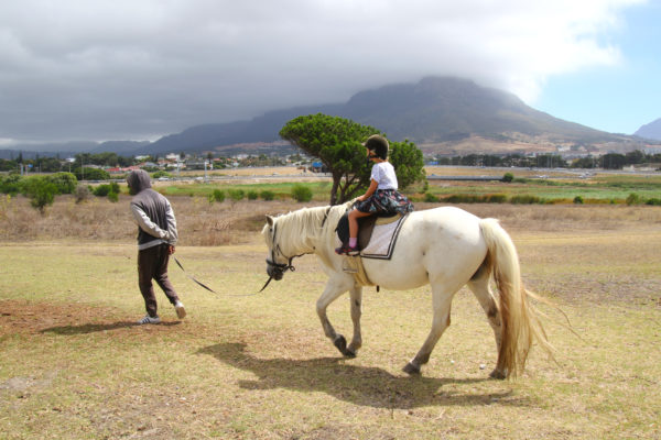 Cape Town, child friendly, things to do, parenting, kids activities, agaaain, outings, childhood, things to do, things to do with kids in Cape Town, things to do with kids near me, things to do with kids this weekend, kids activities this weekend, family adventures Cape Town, children's activities Cape Town, toddlers, oude molen eco village, pinelands, horse riding, horse riding for kids, outdoor adventures, family outing